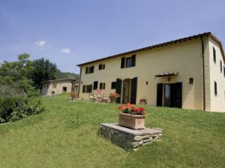 This classic villa near Florence is in fact 2 separate buildings offering accomm