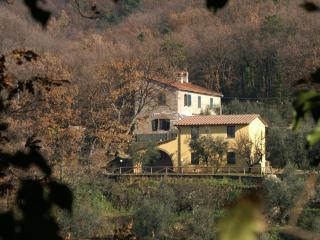 Monsummano Terme 26086