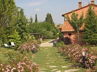Castiglione D'orcia 62100, Castiglione D'Orcia