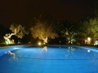villa con piscina immersa in uliveto secolare, Monteroni di Lecce
