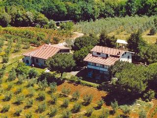 Agriturismo La Sassetta, Bibbona