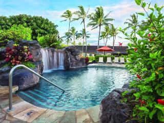 Oceanfront Resort Condo Centrally located in Kapaa