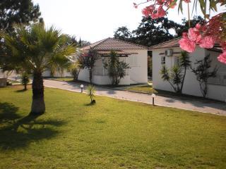 Dimitris Village3, Spartia
