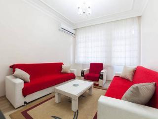 Twin & Next Door Apartments,For Large Groups !, Estambul