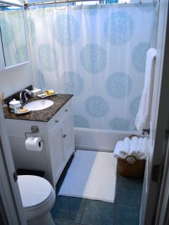 Cottage bathroom with tub/shower combo…Or shower in the outdoor garden shower.