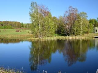 Private 40 Acres With Large Home, Great Views, Spa, Pets OK, Pond, Sauna - SALE!