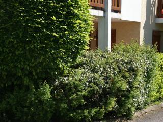 Joli appartement / lac d'Annecy - Saint-Jorioz
