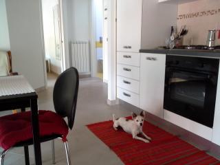 Flea's Home, Fondi