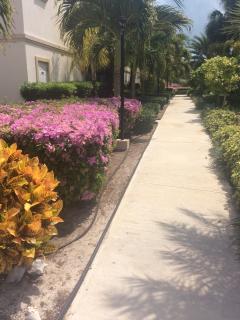 Beautiful Gardens around the Condo