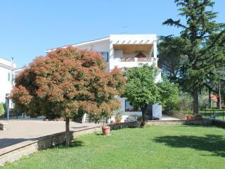 verdeblu - scirocco, Trevignano Romano