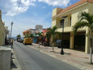 VILLAS EL FARO-2 bdr apt steps away from beach