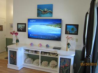Great condo steps to beach free wi-fi, Kihei