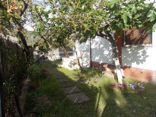 Il giardino privato che circonda Villa Stella Marina
