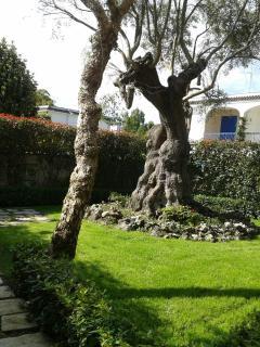 veduta del giardino privato