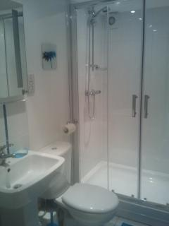 Basement shower room