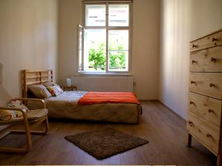 Spacious & Centrical 105m2 flat, Prague