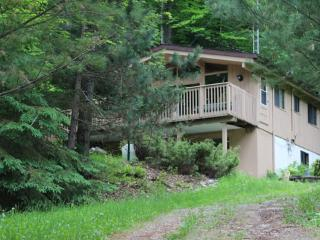 Ski Chalet In the Heart of Haliburton County