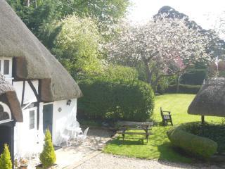Wishing Well entrance & garden
