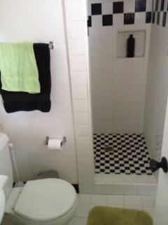 Master bathroom: toilet, sink, shower