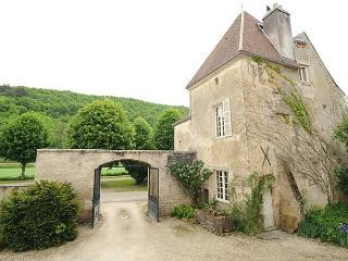 Château de Sermizelles, Voutenay-sur-Cure
