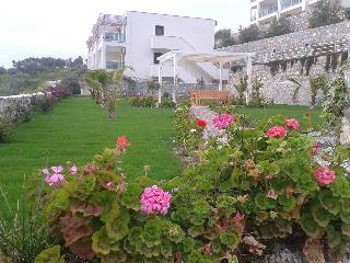 Meltemi Two Bedroom Apartment, Gulluk