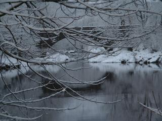 Beaver pool in winter. Just below the house. The River Conwy.