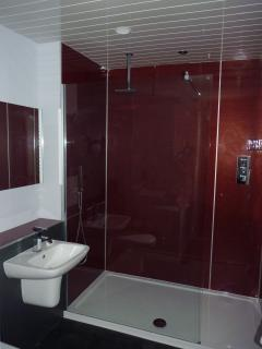 Shower room with walk-in deluge shower and demister mirror