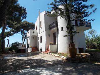 Villa Clara, immersa nel verde e fronte mare