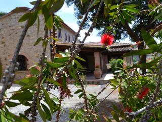Agriturismo La Ghiraia: Castagno, Santa Luce