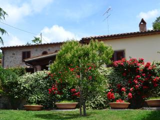 Agriturismo La Ghiraia: Tortora, Santa Luce