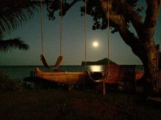 Waimanalo Turtle Cottage