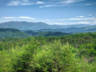 *Luxury All Wood Cabin in Pigeon Forge *Mountain Views!!* 5 Miles to Parkway, Sevierville