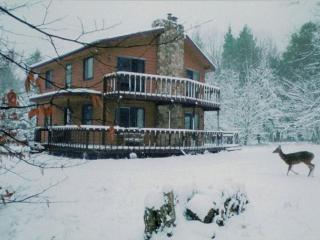 Casa Paradiso, Davis