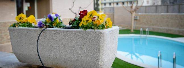 Piscina comunitaria con jardín