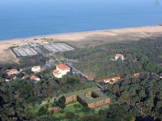 villa 1ere ligne bord ocean à 100m de la plage, Labenne