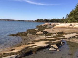 Inner Harbor Retreat