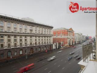 Studio Apartment at Tverskaya Area, Moscow - 1118
