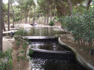 Garaje/parque/Playa/Centro/grande App.Guardamar, Guardamar del Segura