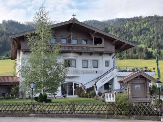 Tennladen Apartments 'Hopfgarten' Tyrol Austria, Niederau