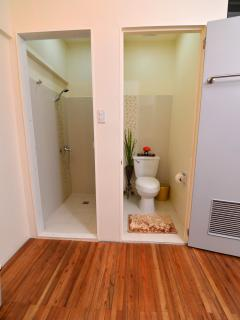 Shower on the left and the toilet on the right.