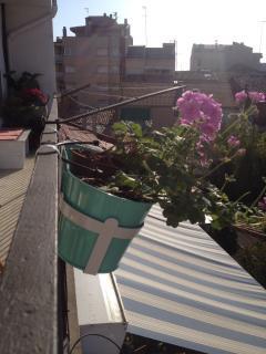 Vistas desde el balcón trasero