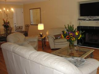 Living area with fireplace & flat screen TV & DVD player..