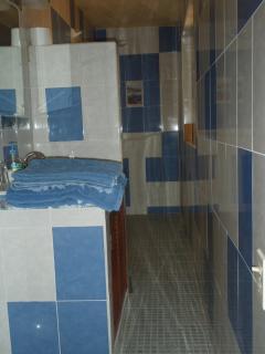 Skinny Master Bathroom
