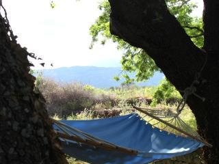 Etna tra le querce, Santa Venerina