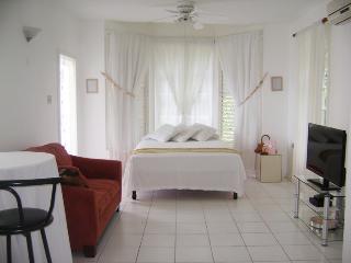 ALMOND BLISS (Ocho RIos Apartment), Ocho Rios