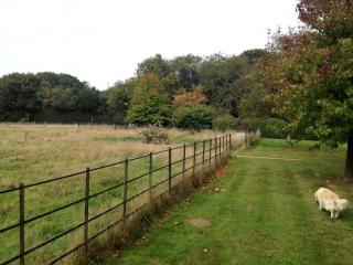Holiday home in the Chilterns, close to Henley, Henley-on-Thames