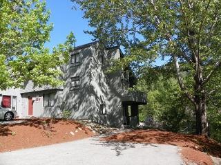 Roomy Vacation Condo across from Loon Mountain Resort, Campton