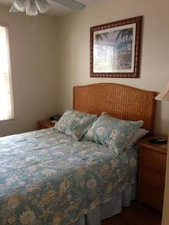 master bedroom with queen bed and full closet, 32' flat screen TV