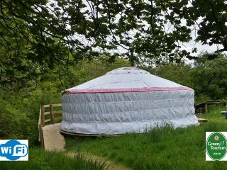 Barley Top - Our Mongolian Yurt, Holsworthy