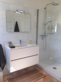 The bathroom and walk-in shower